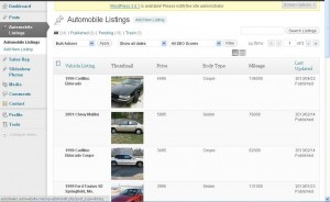 User Vehicle Listing Dashboard